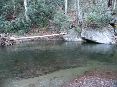 Squally Creek